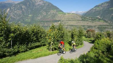 Rennradkarte Naturns nr. 06: Untervinschgau Tour